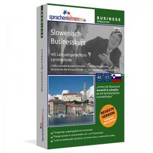 Slowenisch-Business-Sprachkurs für Ihren Beruf in Slowenien-Niveau B2/C1