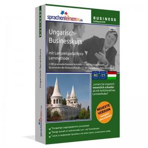 Ungarisch-Business-Sprachkurs für Ihren Beruf in Ungarn-Niveau B2/C1